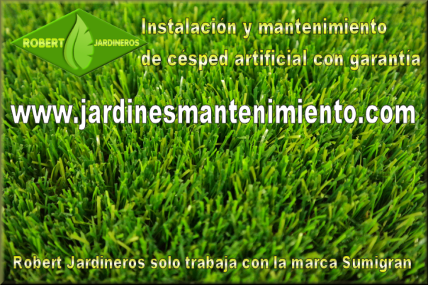 Césped artificial Robert Jardineros